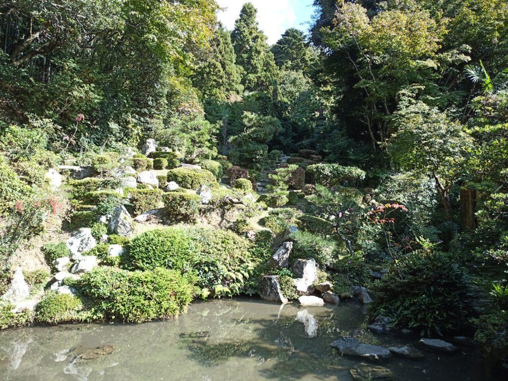 書院東庭「蓬莱(ほうらい)池泉庭」