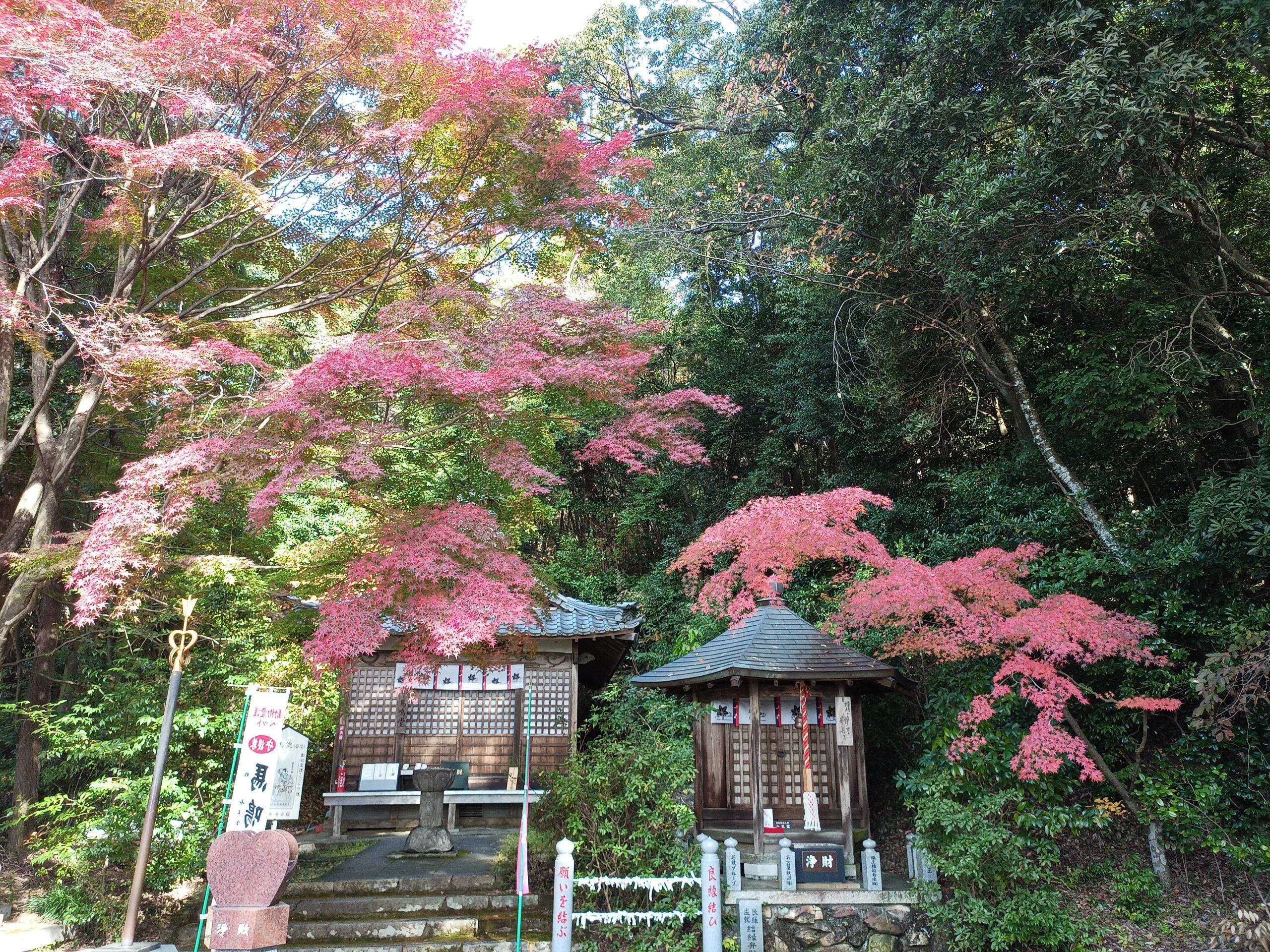 犬山寂光院の紅葉