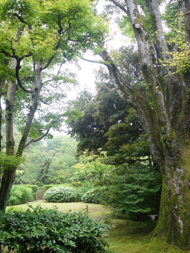 日本庭園有楽園