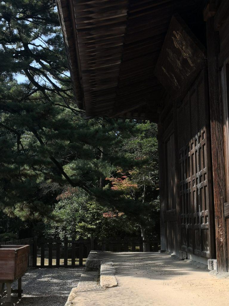実相寺釈迦堂と三河黒松