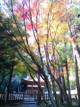 秋の開山堂