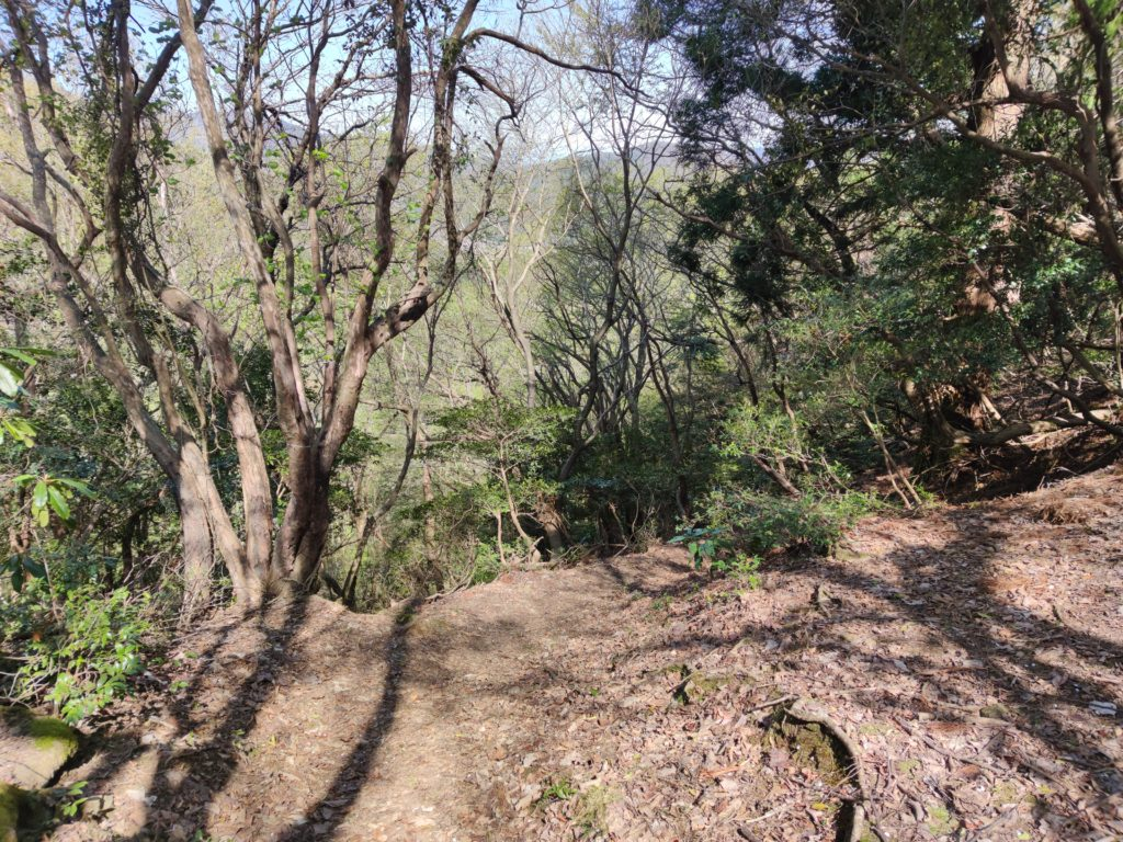 清滝山から延びる尾根
