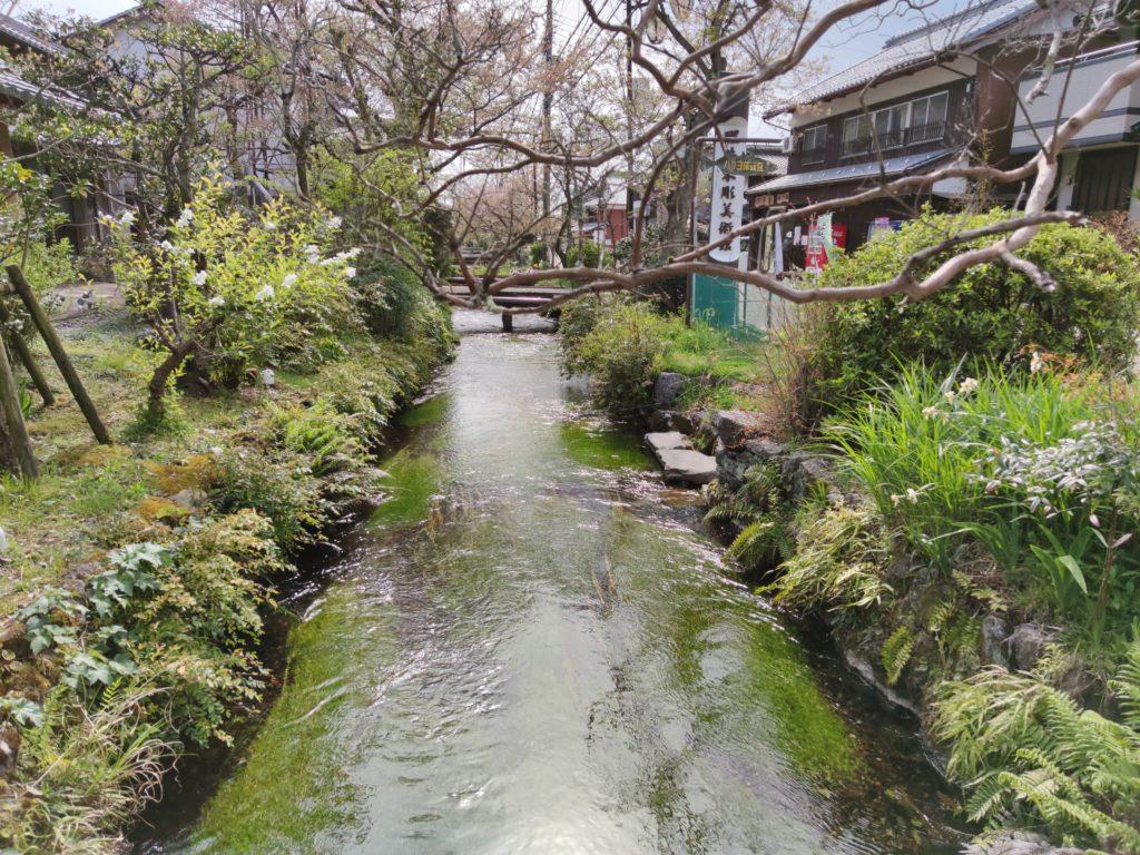 醒井宿を流れる地蔵川