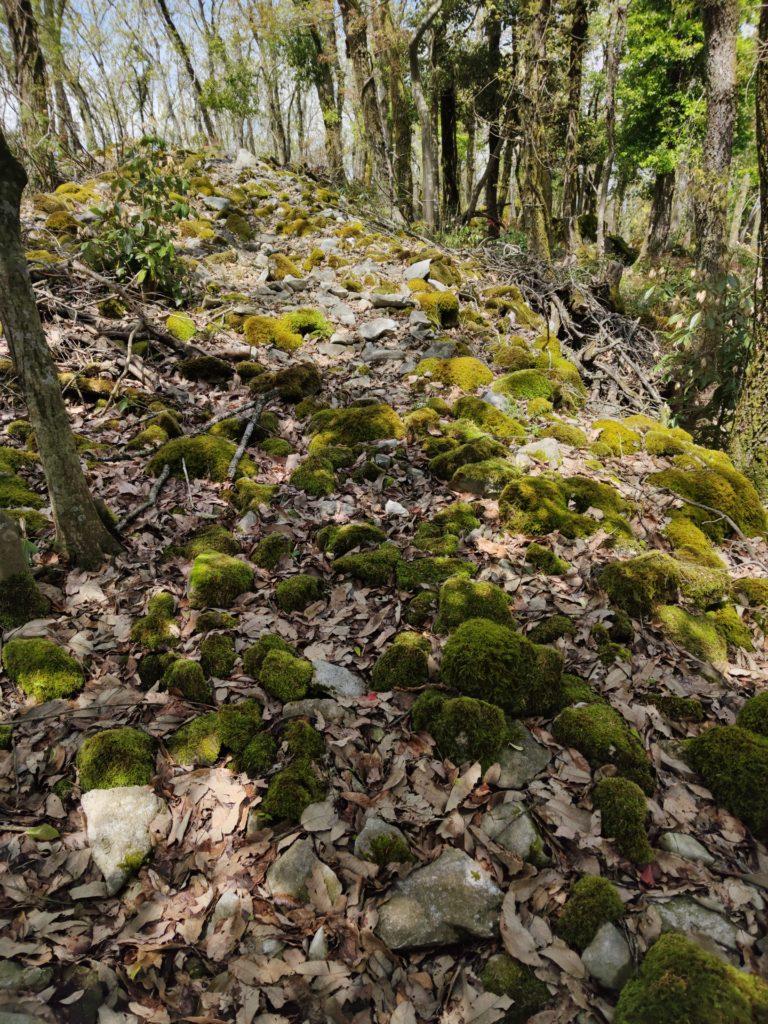 南峰に見られる環状列石