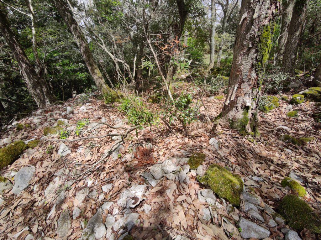 かぶと山の環状列石群
