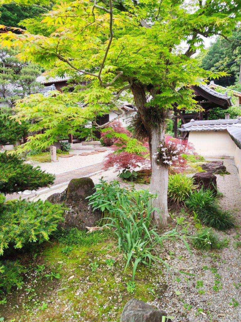 龍済寺庭園