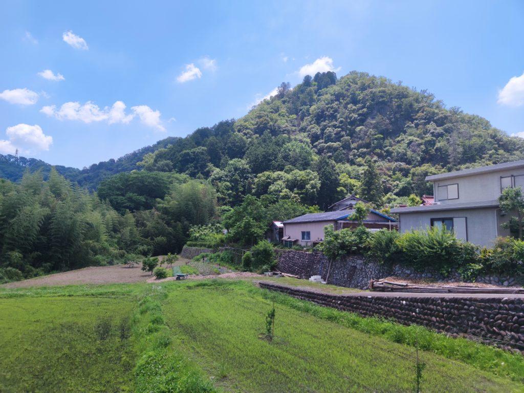 土田城のあった山