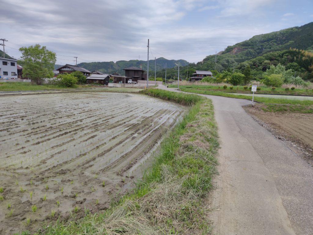 醒ヶ井への中部北陸自然歩道